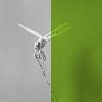 10- روش های ساخت زیست تقلیدانه