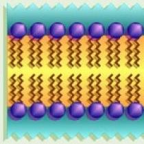 نانوذرات لیپیدی جامد-تهیه شناسایی و کاربرد