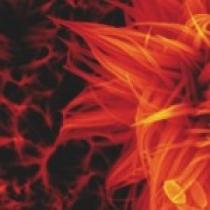 مروری بر کاربردهای ویژه نانـو ذرات دی اکسید تیتانیـم