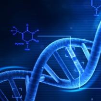 بررسی جنبه های ناقص الخلقه زایی-تراتوژنیسیتی-نانوذرات 1