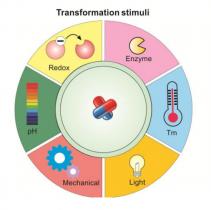 پیشرفت هایی در سیستم های دارورسانی قابل تغییر